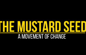 Image for A Movement of Change