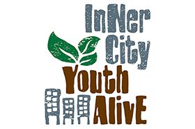 Image for Inner City Youth Alive