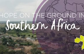 Image for Southern Africa Connections Tour