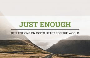 Image for Just Enough: Reflections on God's Heart for the World