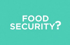 Image for What is Food Security?